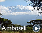 A description of Amboseli National Park and it's Attractions
